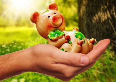 sta-nam-donosi-godina-svinje